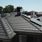 bird control pest solar