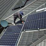 on roof solar panel bird pest control
