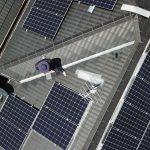 service now solar bird control