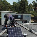 solar panels bird control