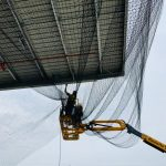 sydney-bird-pest-service