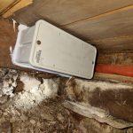 termite bait pest control service call