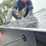 solar bird control job