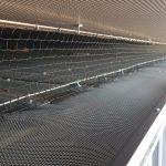 bird pest mesh work in sydney