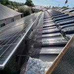 bird control for solar panels